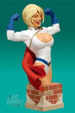 Women of DC Universe POWERGIRL bust~Adam Hughes~Batman~Justice League~Direct~NIB