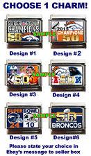 Steelers Super Bowl XLIII Champions Italian Charm #1