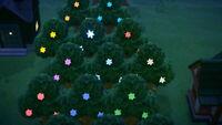 🎮 🔥 Animal Crossing New Horizons 14 Sternernsplitter-Bäume, leuchtende Wälder