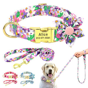 Printed Personalized Dog Collar with Leash set Custom Engraved Name ID Buckle