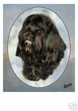 Shih Tzu Mousemat Exclusive Starprint Product