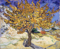 Mulberry Tree Vincent Van Gogh Painting Print Canvas Giclee Repro Poster Small