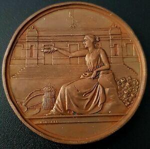 1899 EXPOSICIÓN AGRICULTURA Mexico bronze medal 55g. COYOACÁN Very Nice! UNC.
