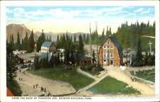 Rainier National Park C.P. Johnston Co. Antique Postcard Vintage Post Card