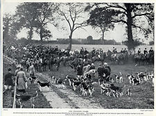 FOXHOUND THE WHADDON CHASE HUNT AT WHITCHURCH NICE OLD IMAGE 1934 DOG PRINT PAGE