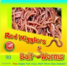 Red Wigglers (90 Count) Live, Healthy Red Worms for Composting, Fishing Bait