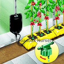 Big Drippa Gewächshaus Growbag Tropfinfusion Bewässerungsset