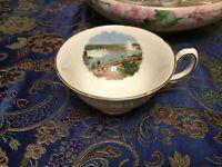 Vtg. Royal Grafton Niagara Falls/General Brock Hotel Tea Cup