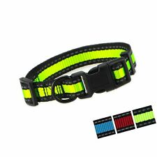 New listing Mile High Life Dog Collar | Reflective 3M Stripe with Nylon Band | Red Blue G.