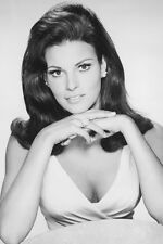Raquel Welch 1960's photo studio 11x17 Mini Poster