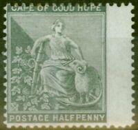 Cape De Bon Hope 1875 1-2d Gris-Noir SG28 Fin MTD Excellent État