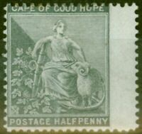 Cape of Good Hope 1875 1-2d Grey-Black SG28 Fine Mtd Mint