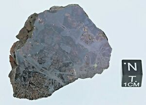 Pallasite JEPARA - Fragment -  73,3 g - 53 x 45 x 22 mm cut & polish side
