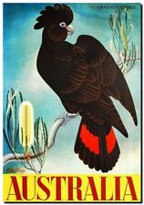 "Vintage Travel Poster CANVAS PRINT Australia Banksia & Black Cockatoo 16""X12"""