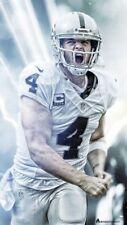 NFL Football 1.5 x 3 FT Photo Print Poster DEREK CARR Poster 1