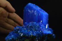 Chalcanthite BIG blue crystal matrix Poland specimen copper sulfur like azurite
