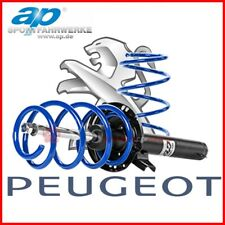 Kit Assetto Sportivo Ammortizzatori Molle Peugeot 106 1996 - 2005 AP 40mm