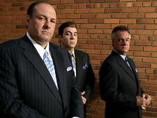 "James Gandolfini, Tony Soprano. ""The Sopranos,""  Photo Print 14 x 11"""