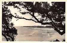 BR16936 Ile de Noirmoutier Bois de la Chaize france