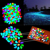Lots 10X Colorful  Fish Tank Aquarium Glow Rock in The Dark Stones Pebbles s