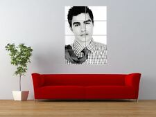 DAVE FRANCO ACTOR TELEVISON MOVIE FILM GIANT ART PRINT PANEL POSTER NOR0032