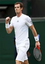 Andy Murray A3 Cartel 4