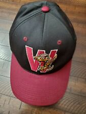 Wisconsin Timber Rattlers Snap Back Hat Adult One Size Black MiLB