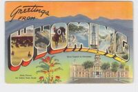 BIG LARGE LETTER VINTAGE POSTCARD GREETINGS FROM WYOMING #3
