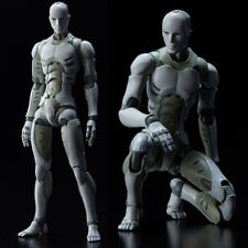 Heavy Industries Synthetic Human He Body Action Figure Figurine 1/6 Scale DM