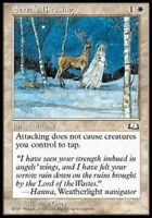 MTG Magic : Playset (4x) Serra's Blessing Aquilon Weatherlight Exc VO