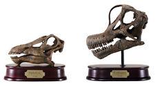 Diplodocus and Brachiosaurus Dinosaur Skull Model Replicas 1/4 Scale
