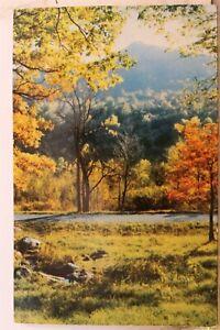 Virginia VA Blue Ridge Parkway Otter Peaks Sharp Top Postcard Old Vintage Card