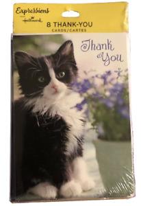 8pc Set Blank NOTE CARDS Black & White Kitty Cat - By Hallmark