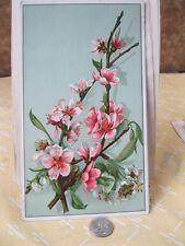 Vintage Print,CHERRY BLOSSOMS,Bufford Boston,Album  Card,Card Stock
