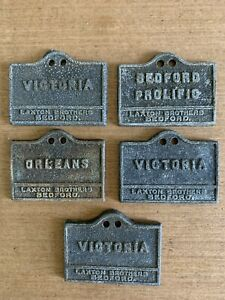 5 Early 20th Century Cast Zinc Laxton Brothers Apple Tree Markers