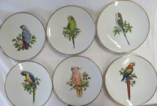 BAREUTHER WALDSASSEN BAVARIA SET OF SIX PARROT PLATES