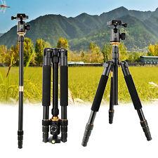 Portable Travel Pro Carbon Fiber Tripod Monopod & BallHead for DSLR Camera Q999S