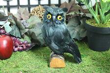 Black Realistic Medium Feather Owl Bird Taxidermy Owls Furry Animal Bird