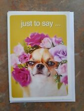 Chihuahua Blank / Birthday Card - Brand NEW - MUST L@@K!!