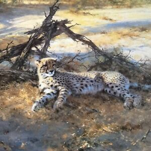 "David Shepherd Cheetah "" SAVUTI SANDS "" Limited Edition Print"