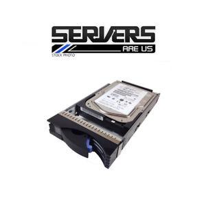 IBM 42D0370 300Gb Fibre Channel Disque Lecteur 10K 2Gbps
