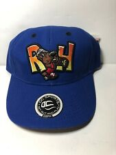 Midland RockHounds Mens Minor League Baseball Cap, Hat, Blue, Strapback, New