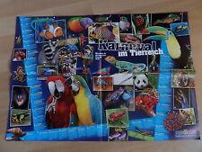 59x41 Poster Karneval bunte Tiere der Welt Fisch Frosch Papagei Kinder MEDIZINI