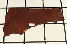 """Benedikt"" Brown Scrap Leather Hide Approx. 3.5 sqft. Q99W16-7"