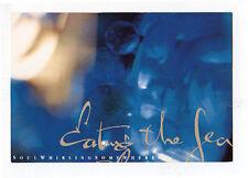 SOUL WHIRLING SOMEWHERE Eating Sea 1993 vintage promo POSTCARD PROJEKT Plaster