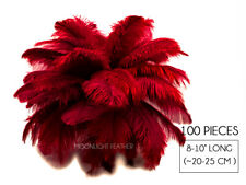 """100 Pieces - 8-10"""" Burgundy Ostrich Dyed Drab Body Wholesale Feathers Mardi Gras"""