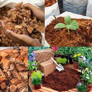 Coconut Husk Chips fiber organic Orchid Growing Medium natural free shipping
