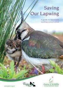 Saving Our Lapwing
