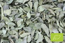 1000Kräuter Bio Curryblätter Curry Blätter ganz 50 g