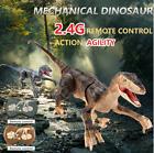 Jurassic Dinosaur Remote Control RC Dino Walking Raptor Kids Toy